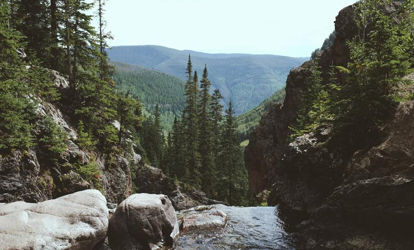 Vail mountains in June